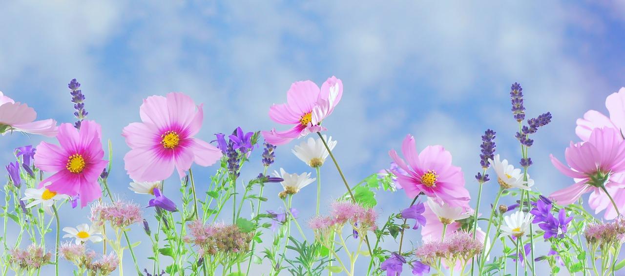 Inspirationen für die Wohlfühloase Garten